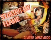 Stoking My Flame: A Pyro, Virgin, Self Pleasure erotic tale