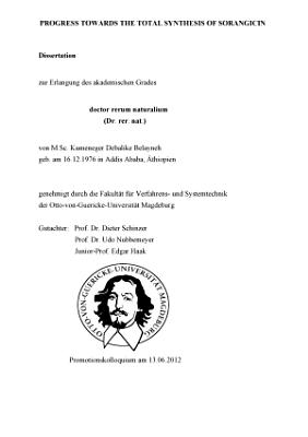 Progress Towards the Total Synthesis of Sorangicin