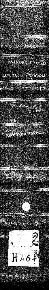 Rerum medicarum Nouae Hispaniae thesaurus seu Plantarum animalium mineralium mexicanorum historia