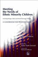 Meeting the Needs of Ethnic Minority Children PDF