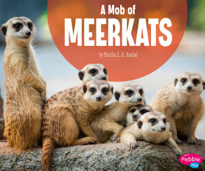 A Mob of Meerkats PDF