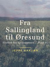 Fra Sallingland til Øresund: Studier fra hjemstavnen. Bind 6