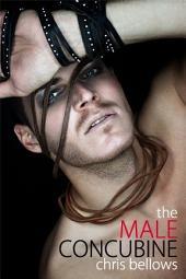 The Male Concubine