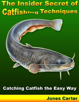 The Insider Secret of Catfishing Techniques  Catching Catfish the Easy Way PDF