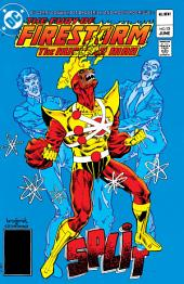 The Fury of Firestorm (1982-) #13