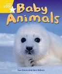Baby Animals PDF