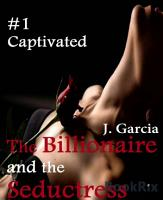 The Billionaire and the Seductress 1 PDF