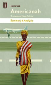 Americanah: by Chimamanda Ngozi Adichie | Summary & Analysis