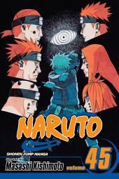 Naruto, Vol. 45: Battlefied, Konoha