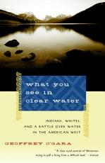 What You See in Clear Water PDF