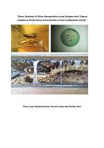 Green Synthesis of Silver Nanoparticles using Stingless bee (Trigona iridipennis Smith) honey and evaluation of their antibacterial activity