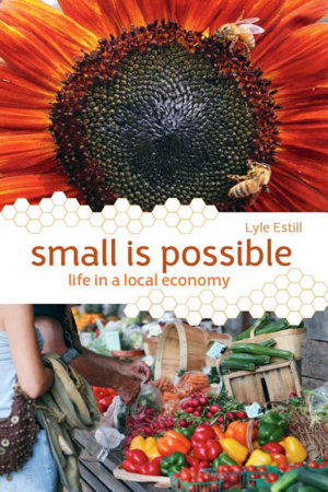 Small is Possible PDF