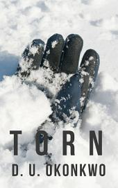 Torn (The Salzburg Saga Book Two)