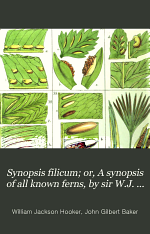 Synopsis filicum : or a synopsis of all known ferns