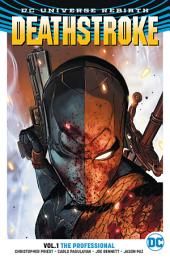Deathstroke Vol. 1: The Professional: Volume 1, Issues 1-6