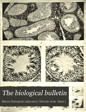 The Biological Bulletin: Volume 25