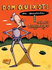 Dom Quixote em quadrinhos