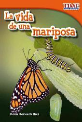 La vida de una mariposa / The Life of a Butterfly