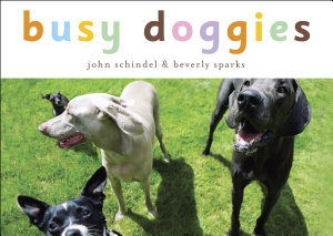 Busy Doggies
