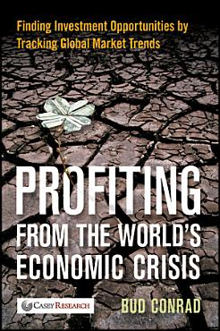 Profiting from the World s Economic Crisis PDF