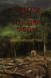 In the Realm of the Diamond Queen Book