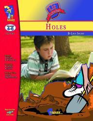 Holes Lit Link Gr  4 6 PDF