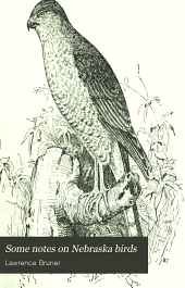 Some Notes on Nebraska Birds