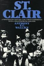 St  Clair  a Nineteenth century Coal Town s Experience with a Disaster prone Industry PDF