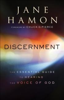 Discernment Book