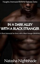 In a Dark Alley with a Black Stranger: A Short Interracial Sex Story with a Black Stranger (BMWW)