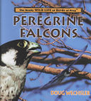Peregrine Falcons PDF