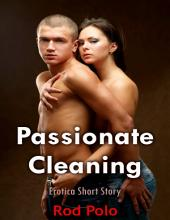 Passionate Cleaning: Erotica Short Story