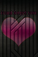 I'cant Forget You