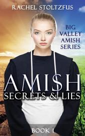 Amish Secrets and Lies: Amish Romance: Amish Country Pennsylvania