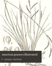 American grasses (illustrated)