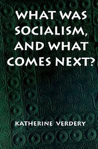 What Was Socialism  and What Comes Next  PDF
