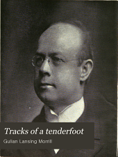 Tracks of a Tenderfoot: In Africa, Asia and Europe