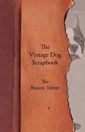 The Vintage Dog Scrapbook   The Boston Terrier