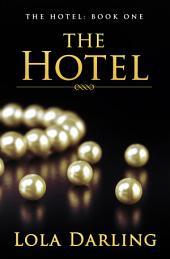 The Hotel: a FREE Billionaire Romance