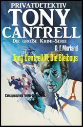 Tony Cantrell 11: Die Bleiboys: Cassiopeiapress Thriller Spannung