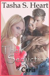 Their Seduction of Chris(Book 1 of Their Seduction Series)