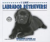 I Like Labrador Retrievers!