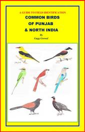 COMMON BIRDS OF PUNJAB AND NORTH INDIA