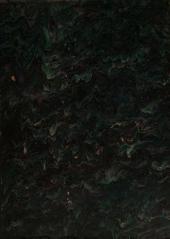 Lexicon Arabico-Latinum praesertim ex Djeuharii Firuzabadiique et aliorum Arabum operibus, adhibitis Golii quoque et aliorum libris, confectum: المجلد 2