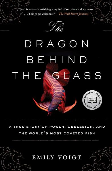 Download The Dragon Behind the Glass Book
