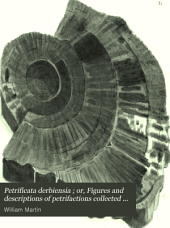Petrificata Derbiensia: Or, Figures and Descriptions of Petrifactions Collected in Derbyshire, Volume 1