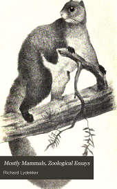Mostly Mammals: Zoological Essays