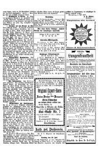 Salzburger Chronik f  r Stadt und Land PDF