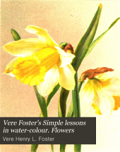 Vere Foster's Simple lessons in water-colour. Flowers
