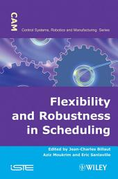 Flexibility and Robustness in Scheduling